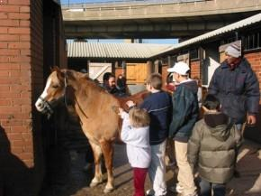 West London Stables - children with horses